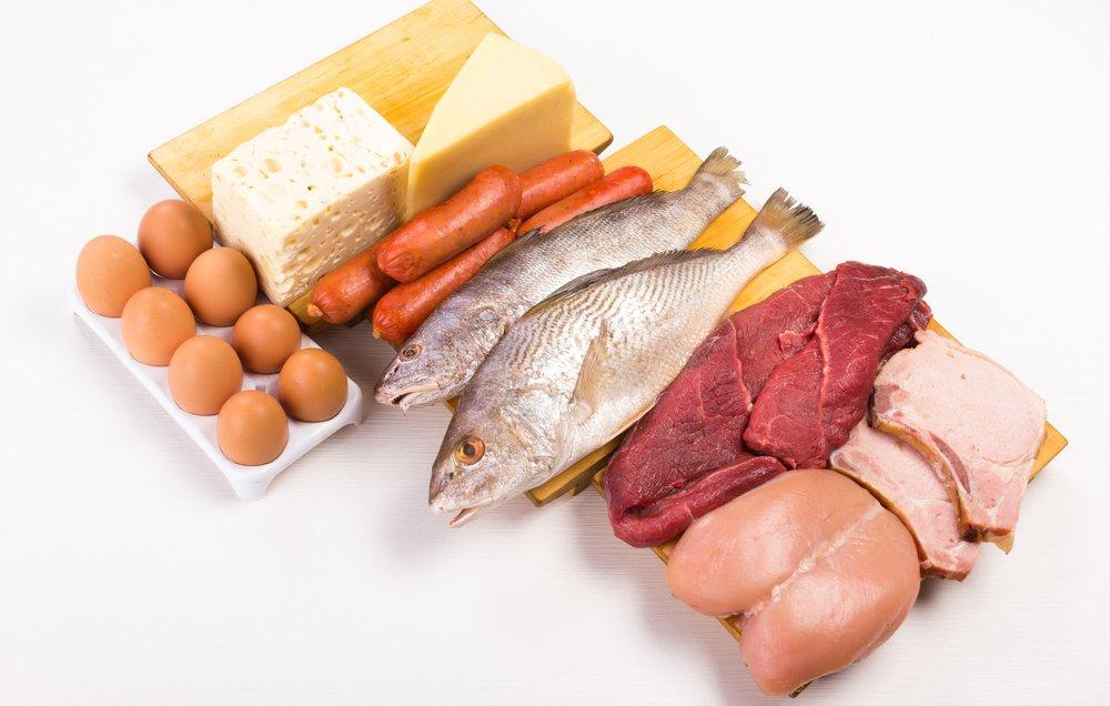 eiwit dieet